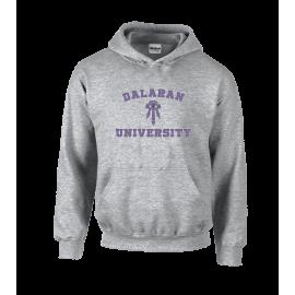 Dalaran University Unisex Hoodie